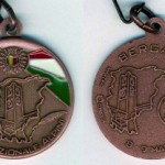 medaglia-adunata-2010