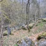 2011 Bosco Penne Mozze Susegana  0043